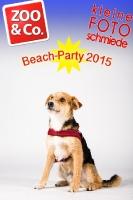 BeachParty_Zoo_Co_2015_07-241