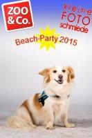 BeachParty_Zoo_Co_2015_07-295